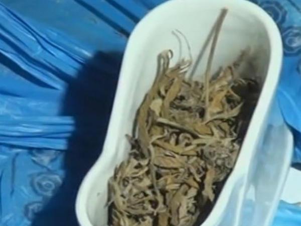 Göygöl sakininin evindən narkotik tapıldı - VİDEO - FOTO