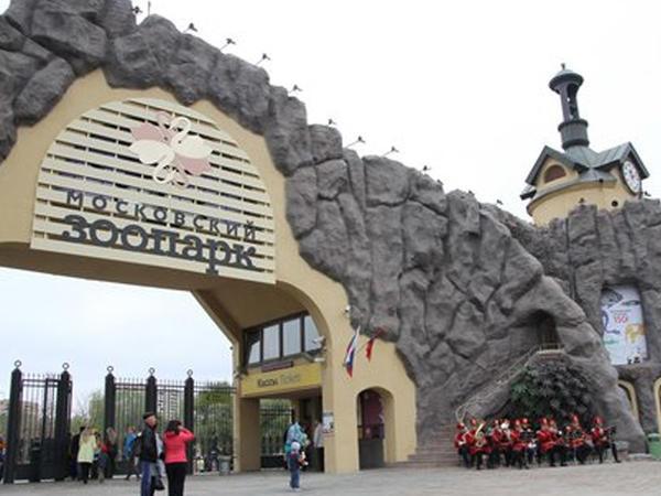 Moskvalılara zooparkda evlənməyə icazə verildi