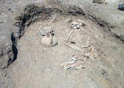 Azərbaycanda arxeoloji qazıntı zamanı aşkarlanmış nadir tapıntılar oğurlandı