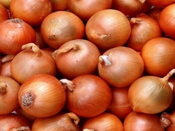 Soğanın qiyməti xeyli ucuzlaşdı - VİDEO