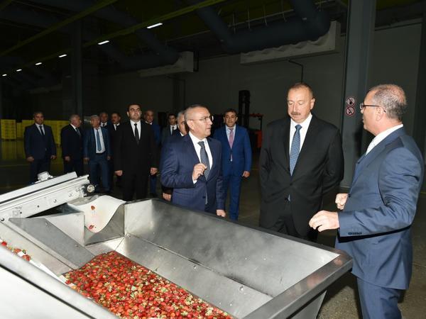 Prezident İlham Əliyevin Gədəbəy və Şəmkir rayonlarına səfəri - YENİLƏNİB - FOTO