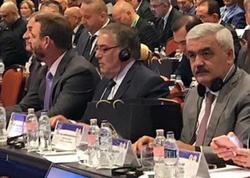 Rövnəq Abdullayev Beynəlxalq Cüdo Federasiyası İcraiyyə Komitəsinin üzvü seçildi