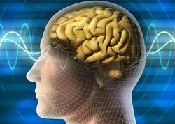 Beyinin işinə mənfi təsir edən vərdişlər açıqlandı