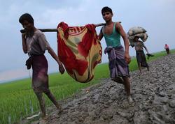 Banqladeşə sığınan Rohingya qaçqınlarının sayı 430 mini keçdi