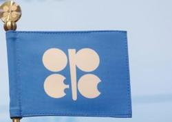 OPEC+ sazişi: 120 faizlik nəticə