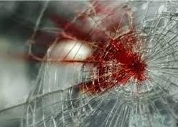 Abşeronda mal-qaranı axtararkən yola çıxan bacı-qardaşı maşın vurub, biri ölüb - YENİLƏNİB