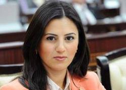 Azərbaycanlı deputatın hesabatı AŞPA-da müzakirə olundu