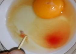 Marketdən yumurta aldı, içərisindən qan rəngində maye çıxdı - VİDEO
