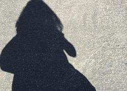 Tovuzda 10 yaşlı qız evindən itkin düşdü - FOTO