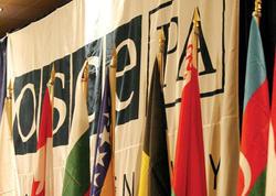 ATƏT PA-nın Cənubi Qafqaz üzrə xüsusi nümayəndəsi istefa verdi