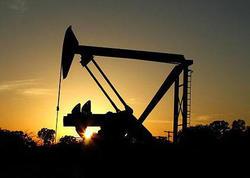 Neft hasilatı ilə bağlı YENİ PROQNOZ