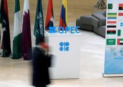 """OPEC-in nefti bahalaşdırması ona <span class=""""color_red"""">baha başa gələcək</span>"""