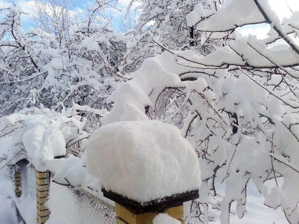Azərbaycan ərazisinə 12 sm hündürlüyündə qar yağdı