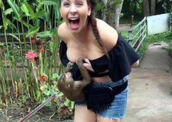Zooparkda meymun qızı biabır etdi - VİDEO - FOTO