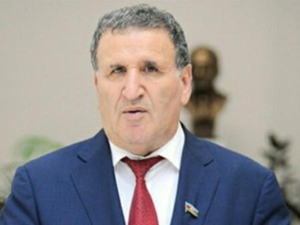 """İsa Həbibbəyli: """"Prezident İlham Əliyev Azərbaycan xalqının mütləq əksəriyyətinin vahid namizədidir"""""""
