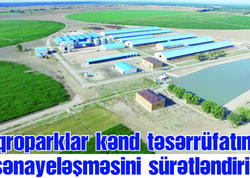 Aqroparklar kənd təsərrüfatının sənayeləşməsini sürətləndirir - FOTO