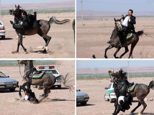 At minmək iranlı deputata baha başa gəldi
