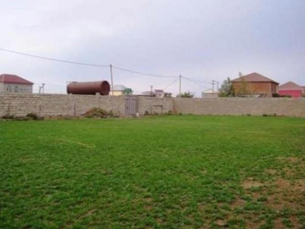 Torpaq bazarında canlanma yaranıb - VİDEO