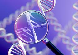 İnsan genomunun atlası yaradılıb
