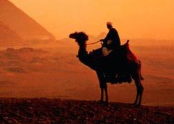 Üveys Qərəni kim olub?