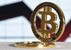 Bitkoini yaxın 10 ildə nə gözləyir?