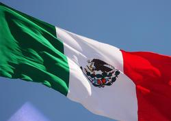 Meksika Boliviyadakı hadisələrə münasibət bildirdi