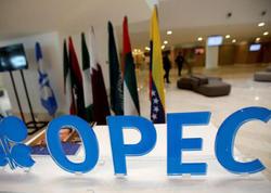 OPEC ötən ilin dekabr ayında neft hasilatını azaldıb
