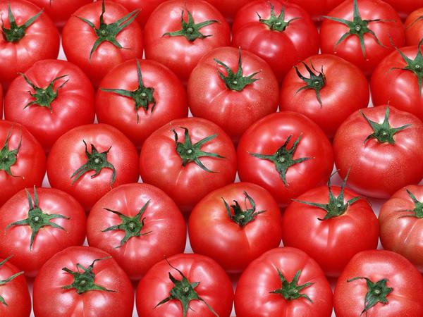 """Rusiya Türkiyə pomidorları ilə bağlı sərt danışdı: <span class=""""color_red"""">Pozuntular var</span>"""