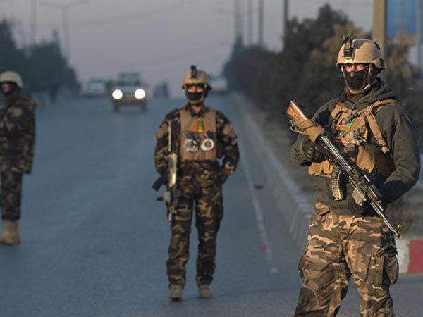 """Bir sutkada 175 """"Taliban"""" üzvü zərərsizləşdirildi"""
