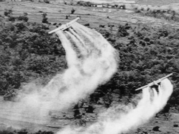 Azərbaycanlı pambıqçıları Vyetnam partizanları kimi zəhərlədilər