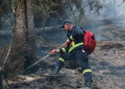 Gürcüstanda meşə yanğını davam edir - FOTO