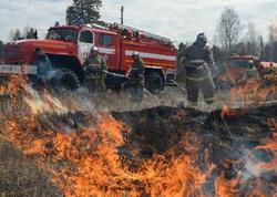 Rusiyada bir sutkada 56 min hektar meşə yanıb