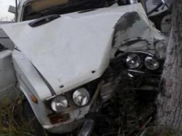 """""""06"""" ağaca çırpıldı: <span class=""""color_red"""">sürücü öldü</span>"""