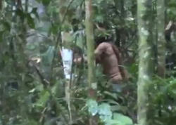 Meşədə 22 il tək yaşayan adam: yalnız o qalıb... - VİDEO - FOTO