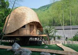 Çində bambuk ev - FOTO