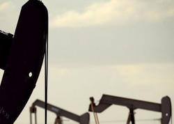 Amerika Neft İnstitutu: Ölkədə neft ehtiyatları azalıb