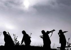 7 PKK terrorçusu öldürüldü
