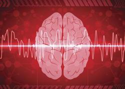 Beyinlərimiz bir-biri ilə danışır?