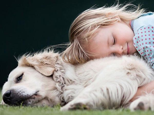 Animaloterapiya heyvanlarla aparılan müalicə üsuludur
