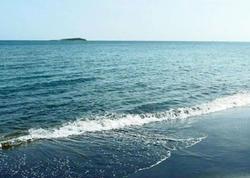 Bakıda dəniz sahilində qolları doğranmış meyit tapıldı - FOTO