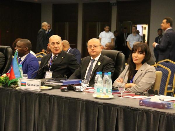 Azərbaycan OPEC+ Nazirlərinin Birgə Monitorinq Komitəsinin iclasında təmsil olunub - FOTO