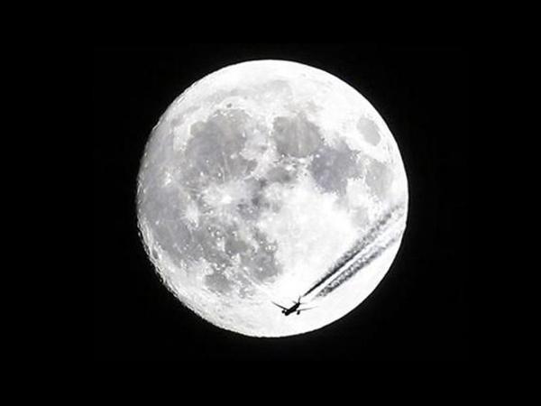 Ayın bu görüntüsü böyük maraq doğurdu