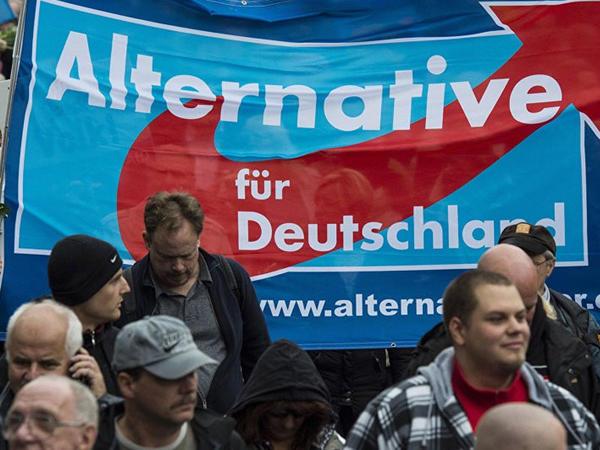 Almaniyanın sağ radikalları populyarlıq qazanır