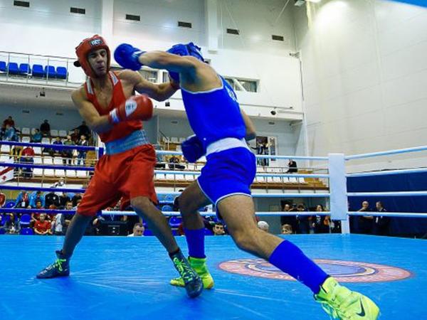 2 boksçumuz Avropa birinciliyində finala yüksəldi