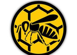 Azərbaycanda arı yeşikləri daşıyan maşınlara xüsusi yol nişanlarının vurulması təklif edilir