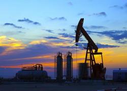 Azərbaycan neft ixracını artırıb