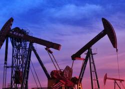 Gələn il ABŞ-ın sutkalıq neft hasilatı 12 milyon barreli ötəcək
