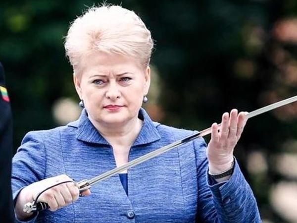 """Litva prezidentinin səfəri təyyarə nasazlığı ucbatından <span class=""""color_red"""">baş tutmadı</span>"""