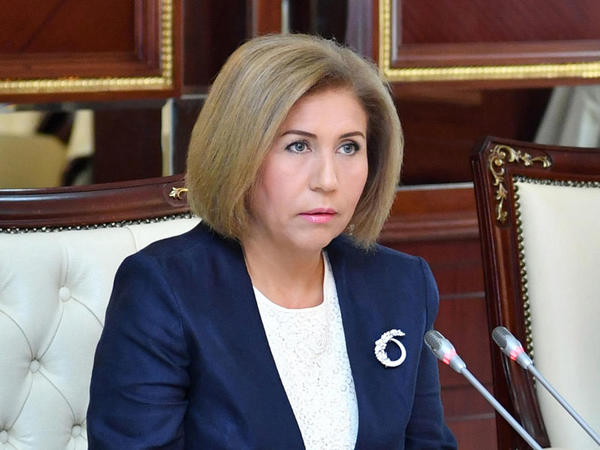 "Bahar Muradova: ""Ermənistanda ""seçki oyunu"" oynanıldı"""