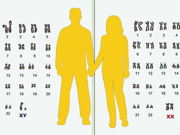 Qohum evliliyindən dünyaya gələn uşaqların əksəriyyəti xəstə doğulur - Hematoloqla MÜSAHİBƏ